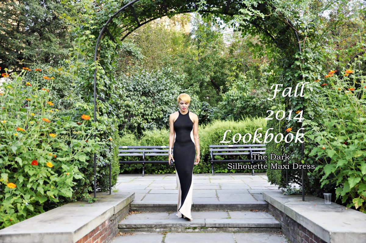 Fall 2014 Lookbook: The Dark Silhouette Maxi Dress